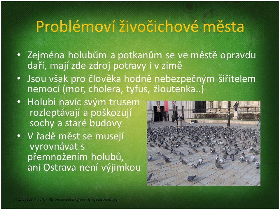 Problémoví živočichové města