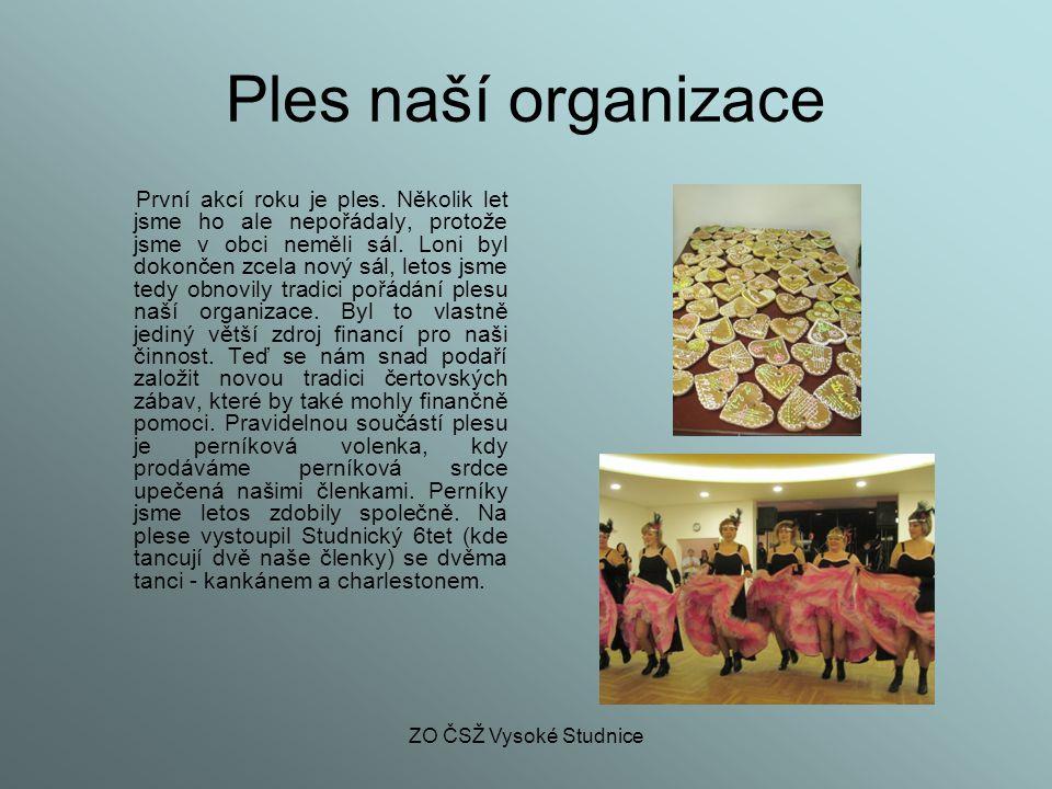 Ples naší organizace