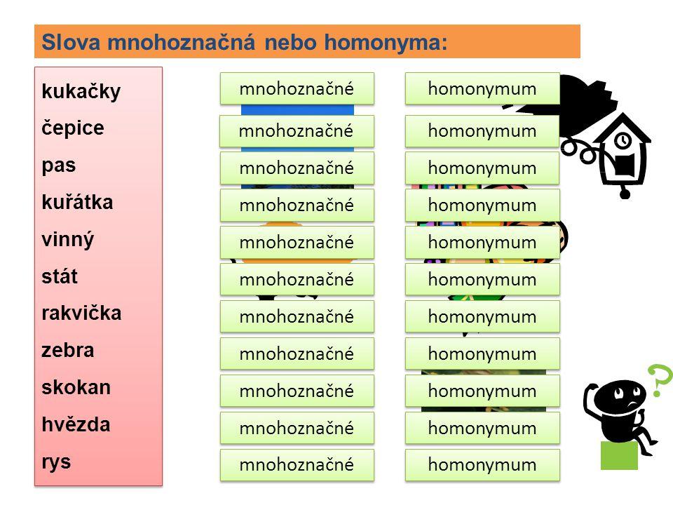 Slova mnohoznačná nebo homonyma: