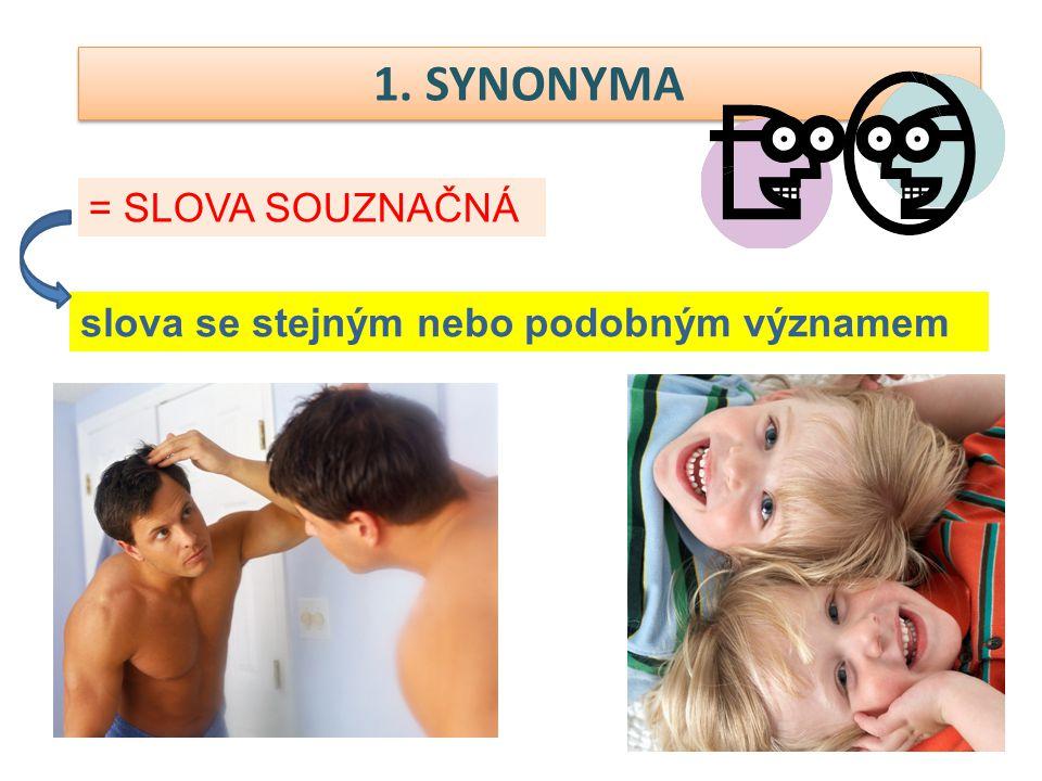 1. SYNONYMA = SLOVA SOUZNAČNÁ slova se stejným nebo podobným významem