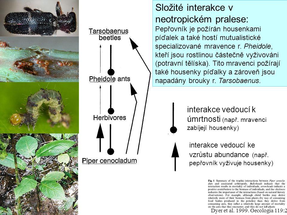 Složité interakce v neotropickém pralese: