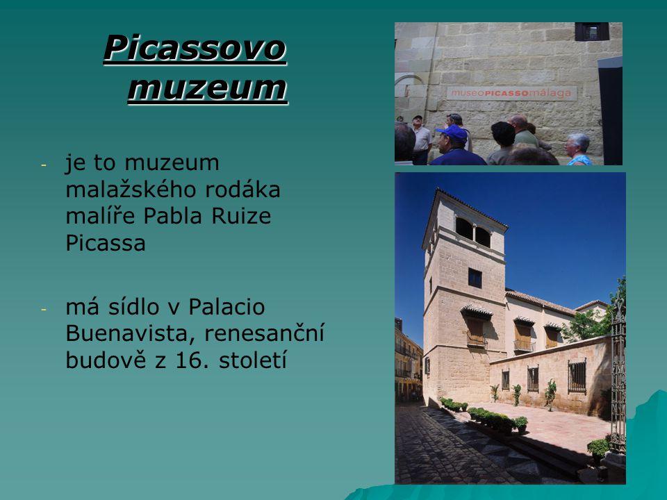 Picassovo muzeum je to muzeum malažského rodáka malíře Pabla Ruize Picassa.