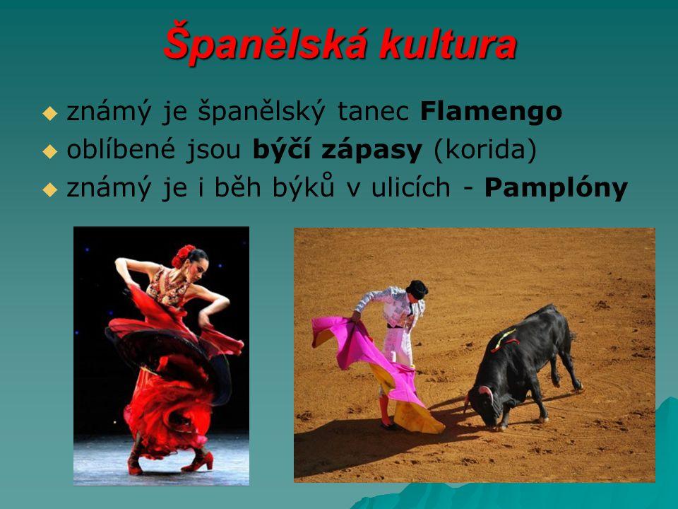 Španělská kultura známý je španělský tanec Flamengo