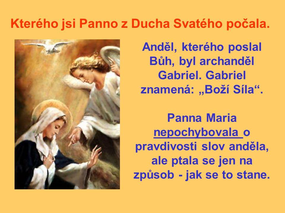 Kterého jsi Panno z Ducha Svatého počala.