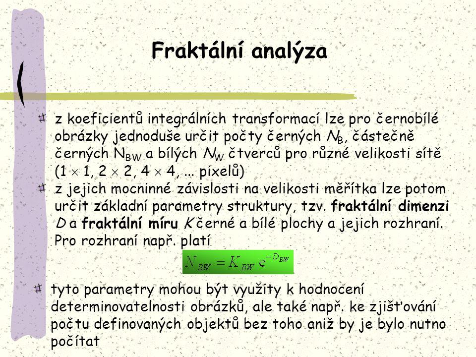 Fraktální analýza