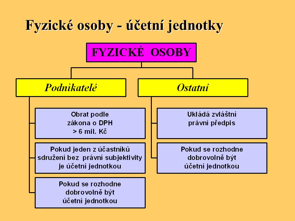Fyzické osoby - účetní jednotky