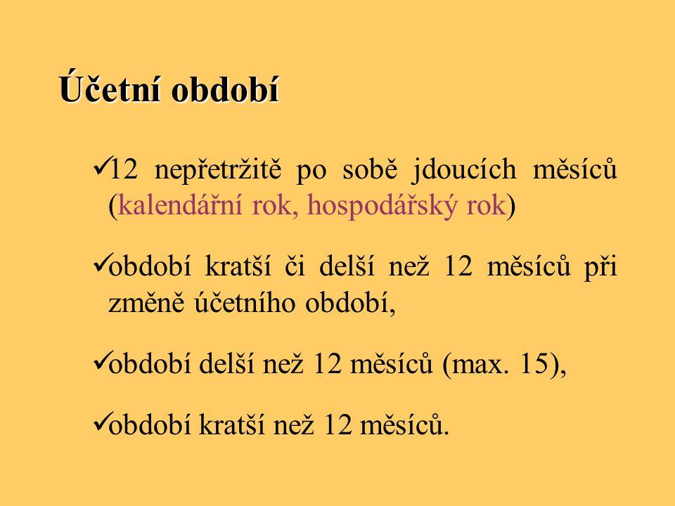 Účetní období 12 nepřetržitě po sobě jdoucích měsíců (kalendářní rok, hospodářský rok)
