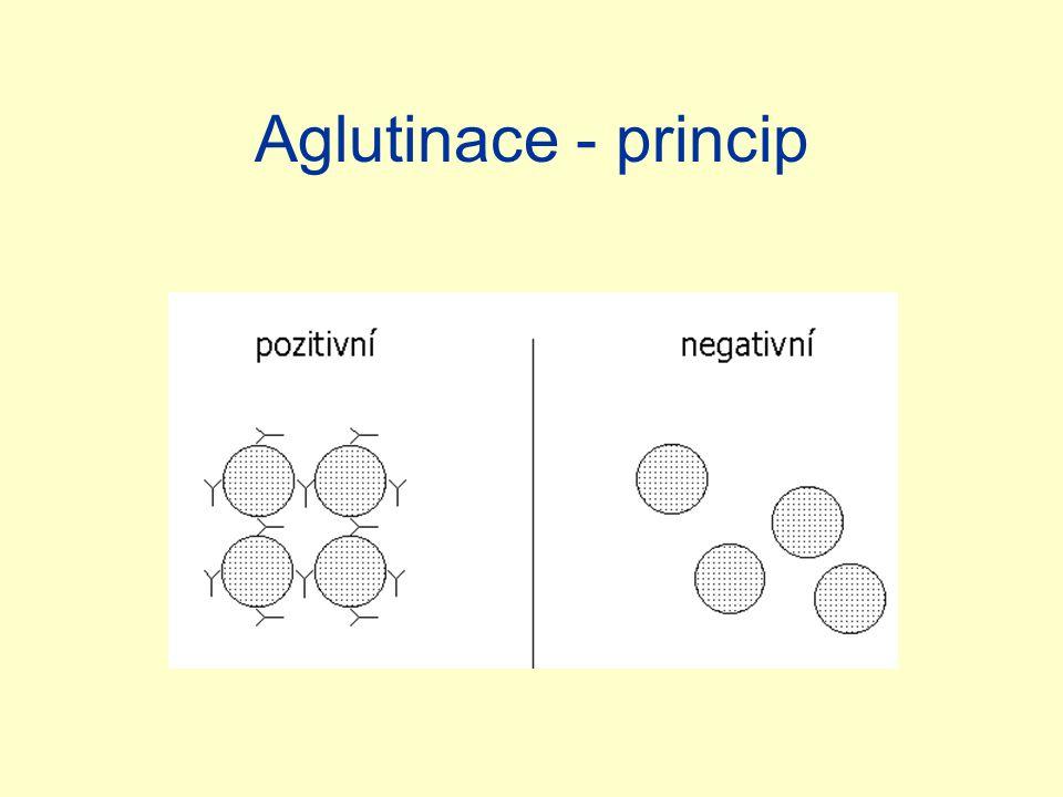 Aglutinace - princip