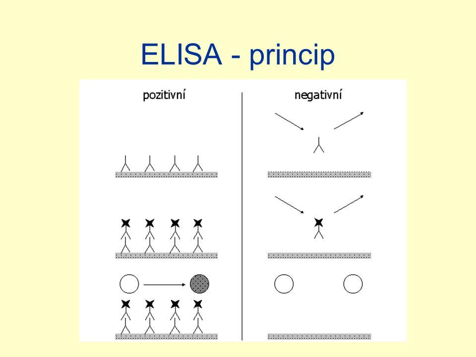 ELISA - princip