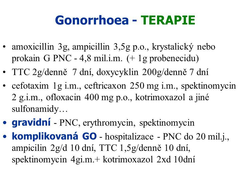 Gonorrhoea - TERAPIE amoxicillin 3g, ampicillin 3,5g p.o., krystalický nebo prokain G PNC - 4,8 mil.i.m. (+ 1g probenecidu)