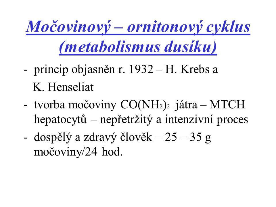 Močovinový – ornitonový cyklus (metabolismus dusíku)