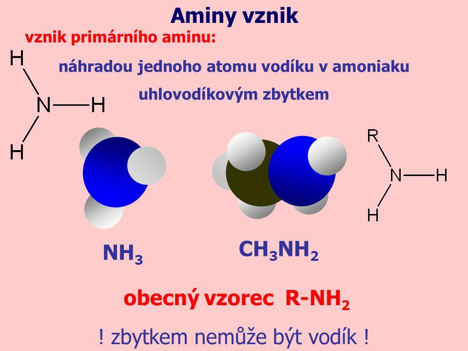 náhradou jednoho atomu vodíku v amoniaku uhlovodíkovým zbytkem
