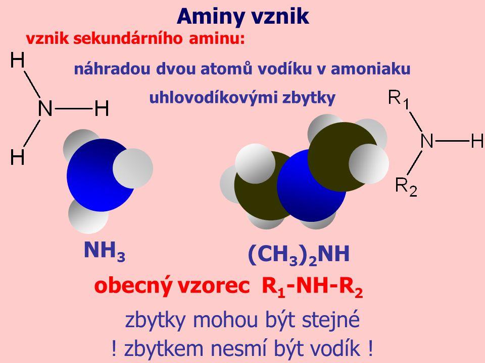 náhradou dvou atomů vodíku v amoniaku uhlovodíkovými zbytky