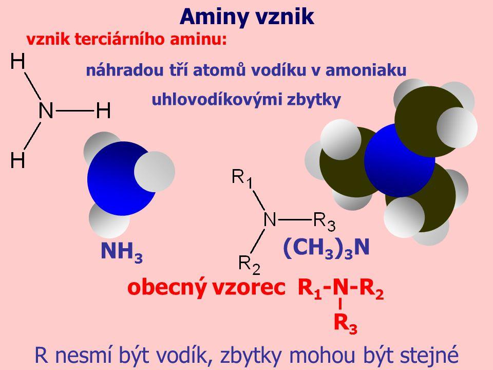 náhradou tří atomů vodíku v amoniaku uhlovodíkovými zbytky