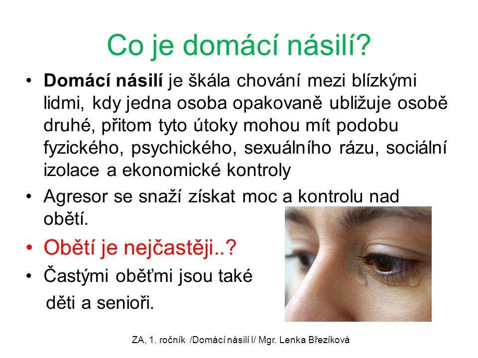 ZA, 1. ročník /Domácí násilí I/ Mgr. Lenka Březíková