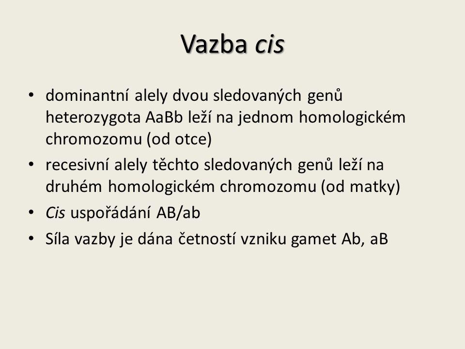 Vazba cis dominantní alely dvou sledovaných genů heterozygota AaBb leží na jednom homologickém chromozomu (od otce)