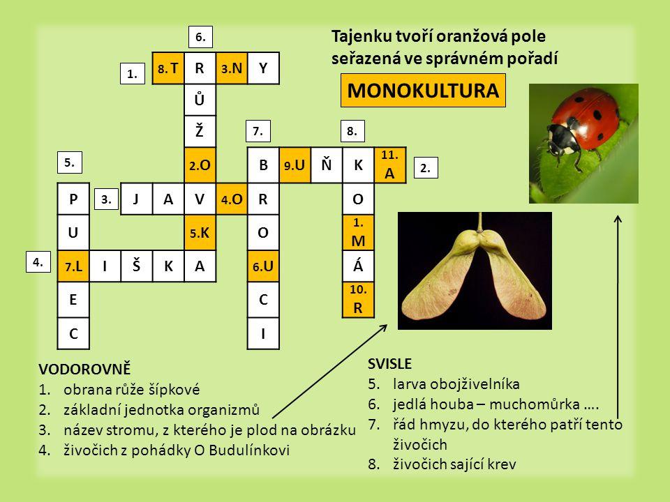 MONOKULTURA Tajenku tvoří oranžová pole seřazená ve správném pořadí R