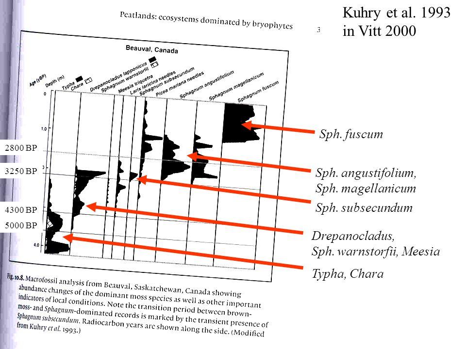 Kuhry et al. 1993 in Vitt 2000 Sph. fuscum