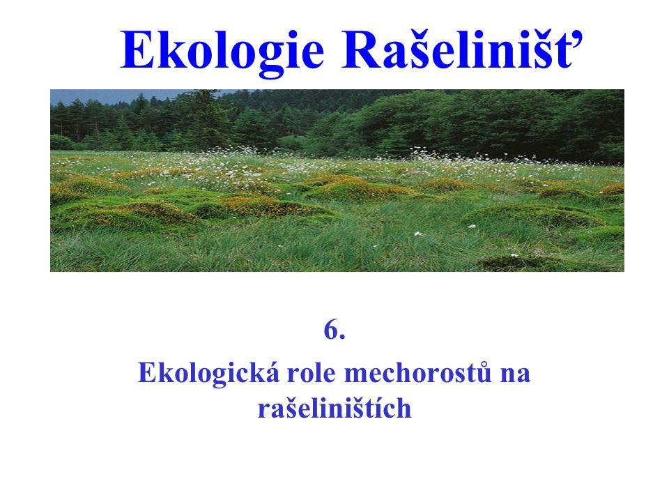 6. Ekologická role mechorostů na rašeliništích