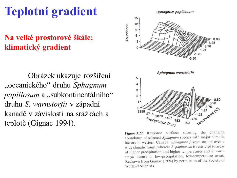 Teplotní gradient Na velké prostorové škále: klimatický gradient