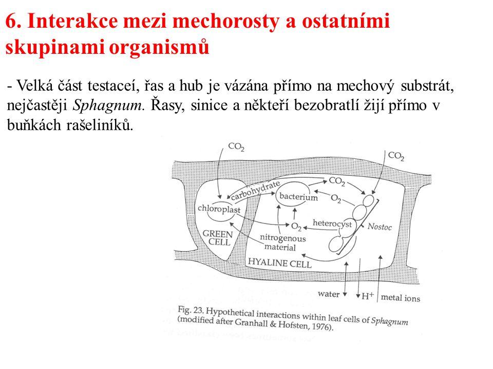6. Interakce mezi mechorosty a ostatními skupinami organismů