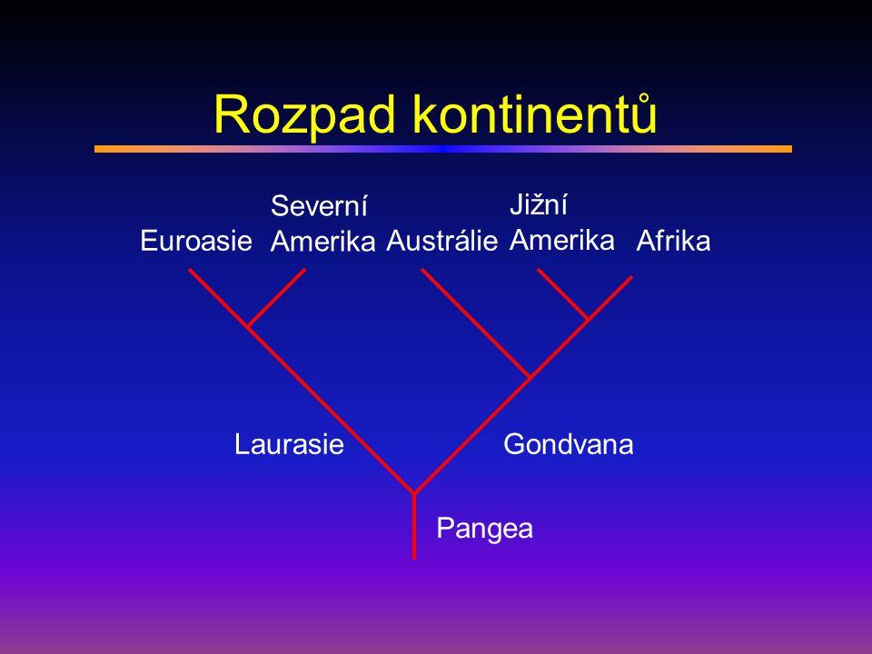 Rozpad kontinentů Severní Amerika Jižní Amerika Euroasie Austrálie