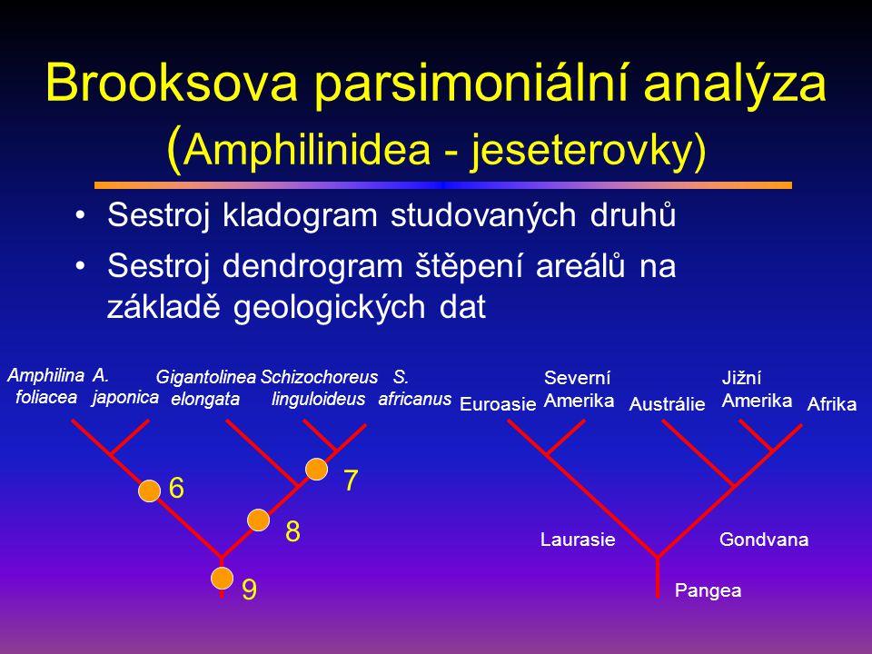 Brooksova parsimoniální analýza (Amphilinidea - jeseterovky)