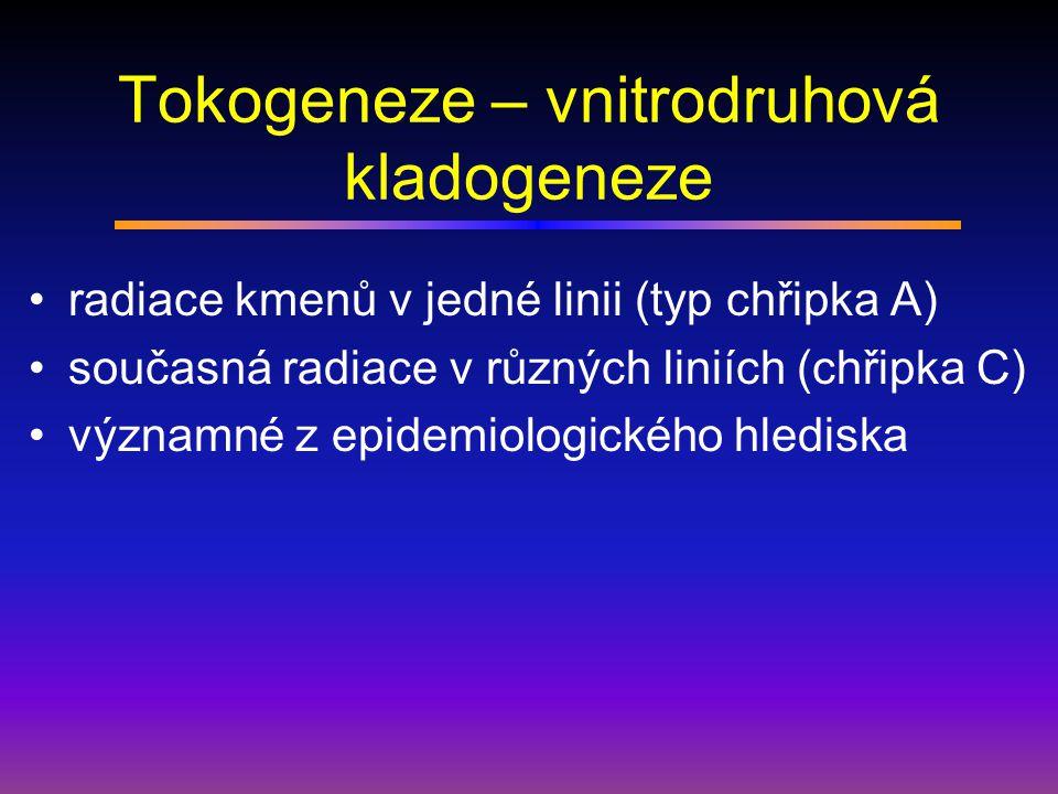 Tokogeneze – vnitrodruhová kladogeneze