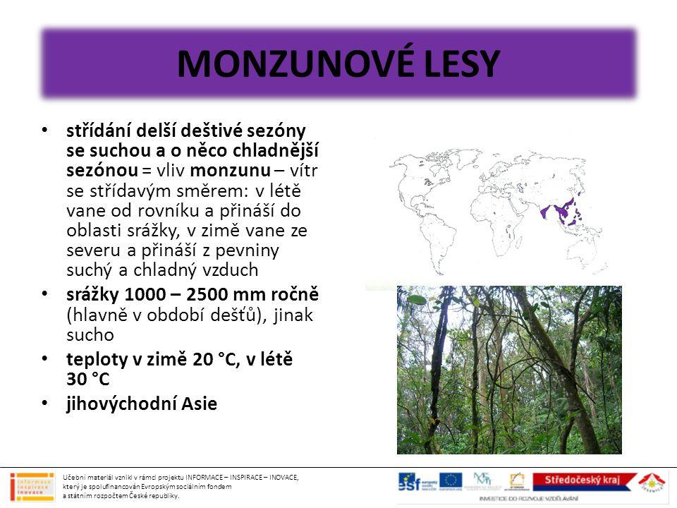 MONZUNOVÉ LESY