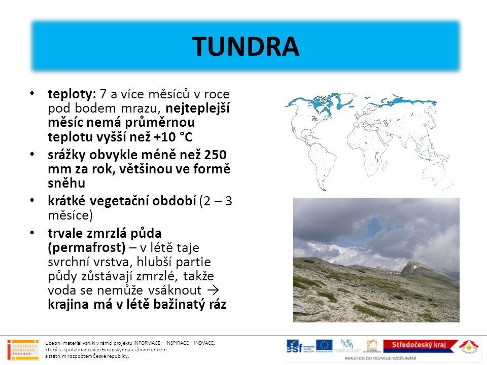 TUNDRA TUNDRA. teploty: 7 a více měsíců v roce pod bodem mrazu, nejteplejší měsíc nemá průměrnou teplotu vyšší než +10 °C.