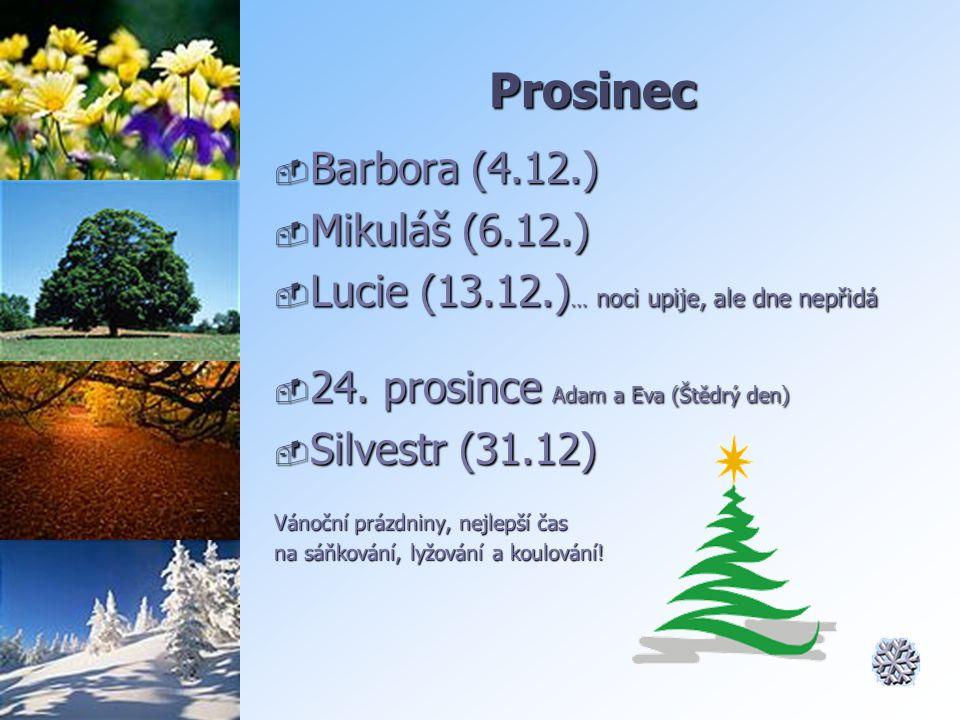 Prosinec Barbora (4.12.) Mikuláš (6.12.)