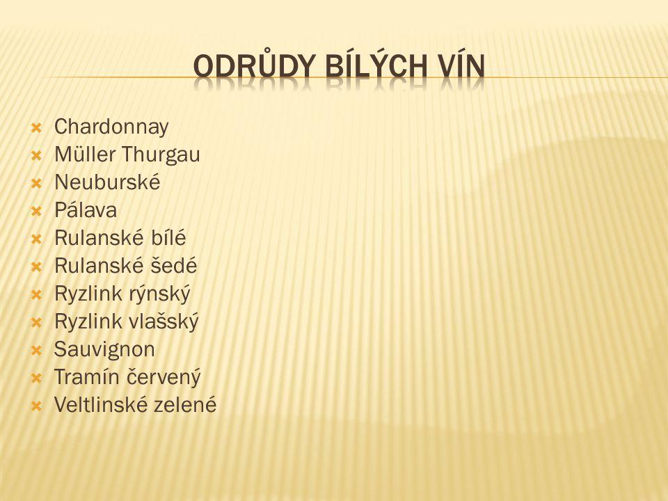 Odrůdy bílých vín Chardonnay Müller Thurgau Neuburské Pálava