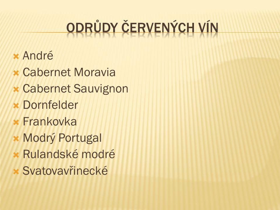 Odrůdy červených vín André Cabernet Moravia Cabernet Sauvignon