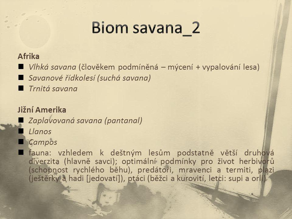 Biom savana_2 Afrika. Vlhká savana (člověkem podmíněná – mýcení + vypalování lesa) Savanové řídkolesí (suchá savana)