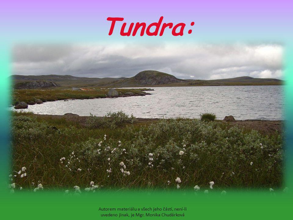 Tundra: Autorem materiálu a všech jeho částí, není-li uvedeno jinak, je Mgr. Monika Chudárková