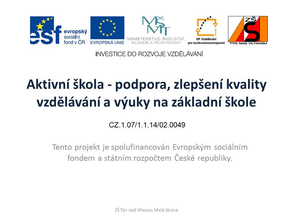ZŠ Týn nad Vltavou, Malá Strana