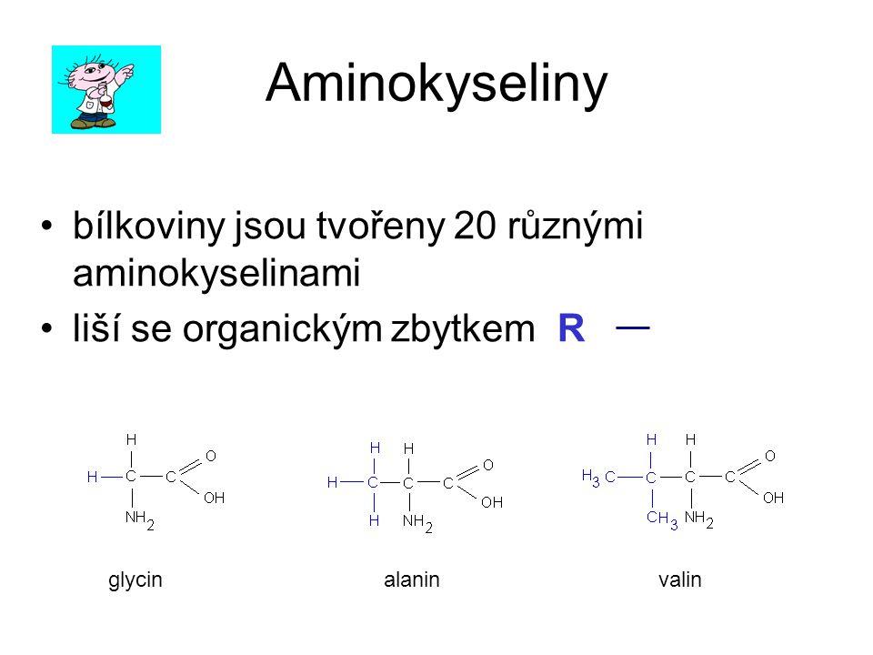 Aminokyseliny bílkoviny jsou tvořeny 20 různými aminokyselinami
