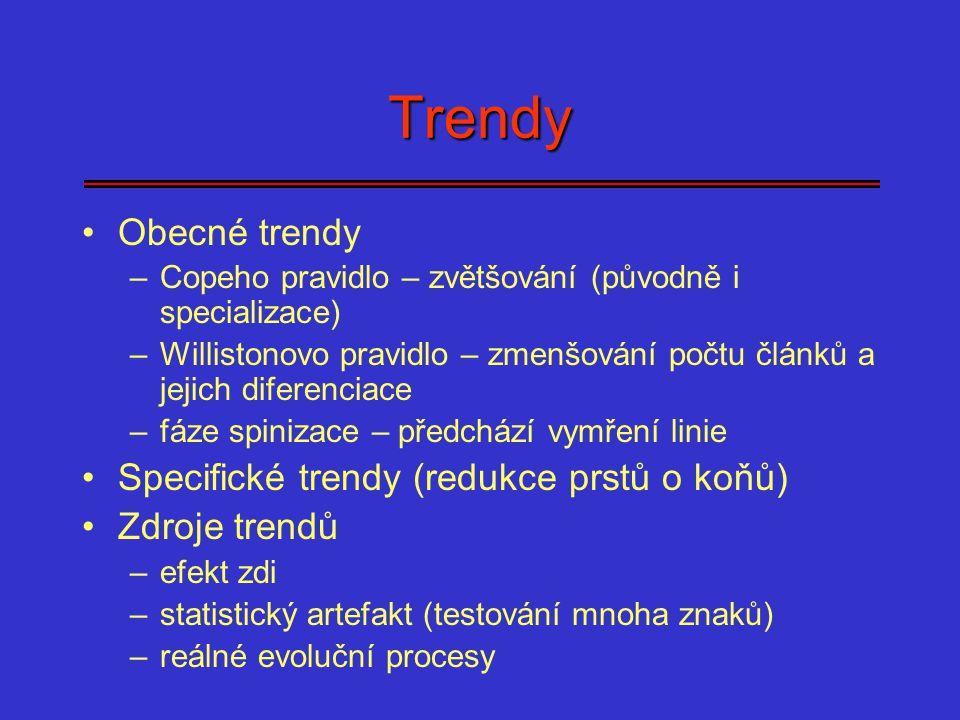 Trendy Obecné trendy Specifické trendy (redukce prstů o koňů)