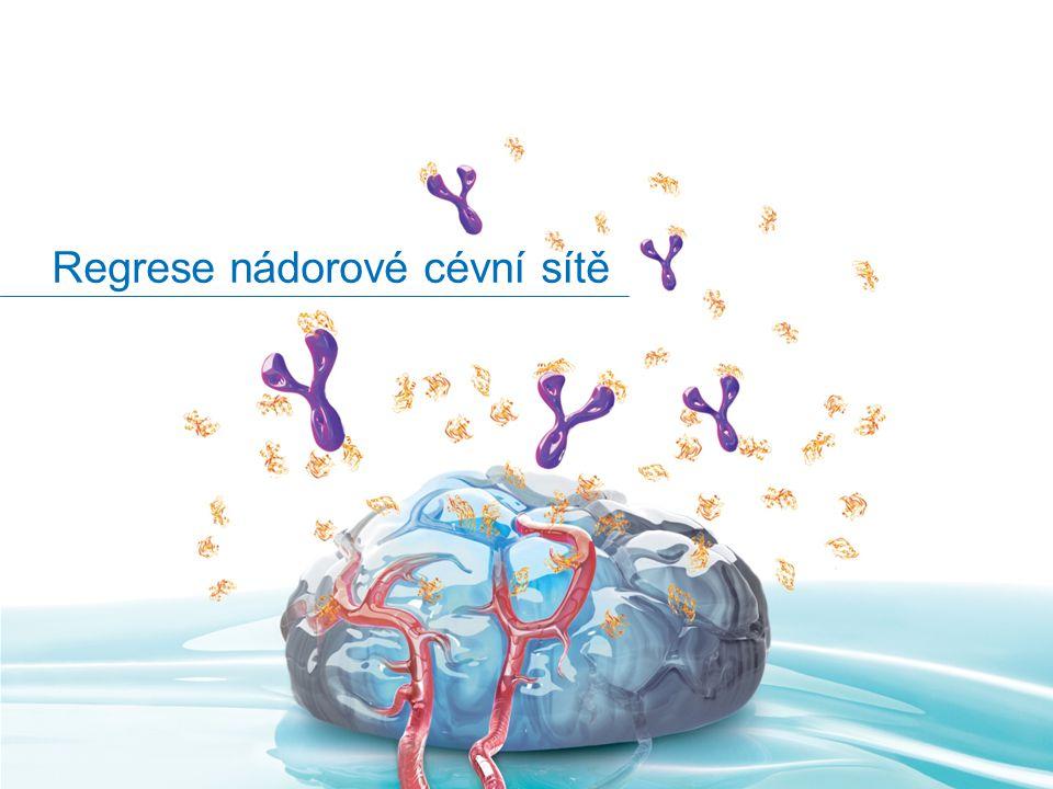 Regrese nádorové cévní sítě
