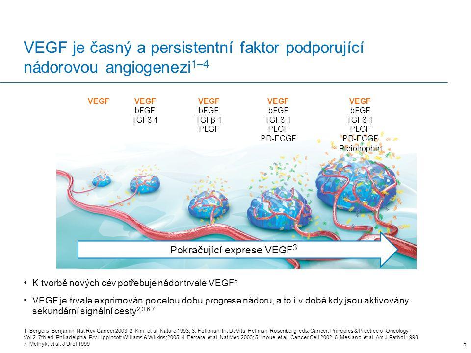 Pokračující exprese VEGF3