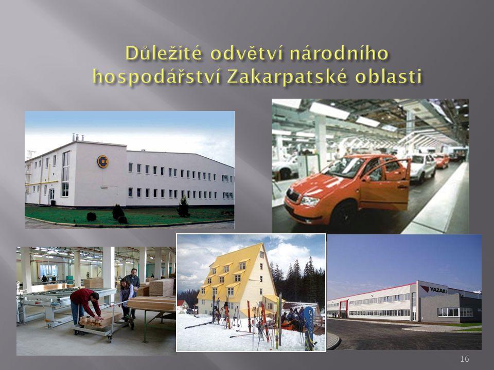 Důležité odvětví národního hospodářství Zakarpatské oblasti