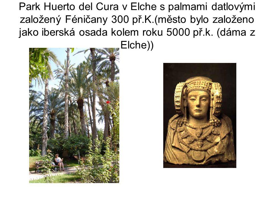 Park Huerto del Cura v Elche s palmami datlovými založený Féničany 300 př.K.(město bylo založeno jako iberská osada kolem roku 5000 př.k.