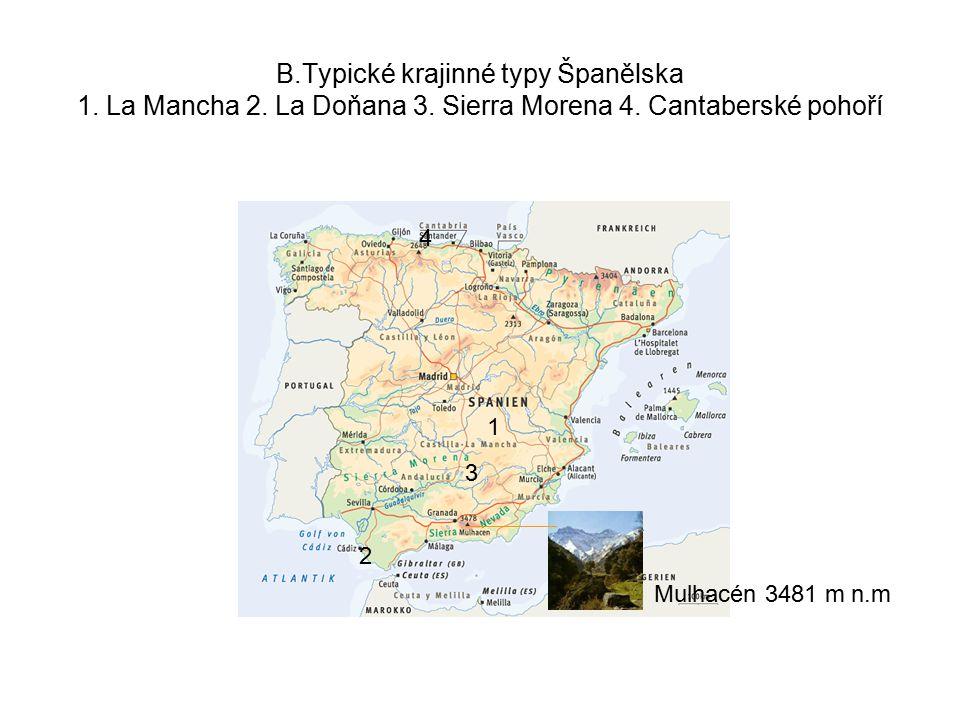 B. Typické krajinné typy Španělska 1. La Mancha 2. La Doňana 3
