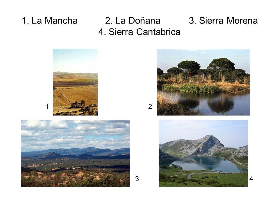 1. La Mancha 2. La Doňana 3. Sierra Morena 4. Sierra Cantabrica