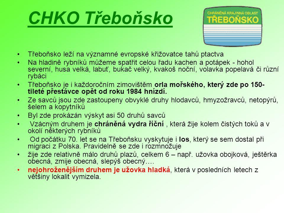 CHKO Třeboňsko Třeboňsko leží na významné evropské křižovatce tahů ptactva.