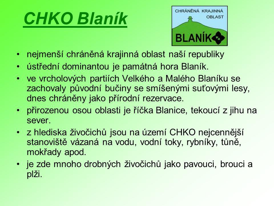 CHKO Blaník nejmenší chráněná krajinná oblast naší republiky
