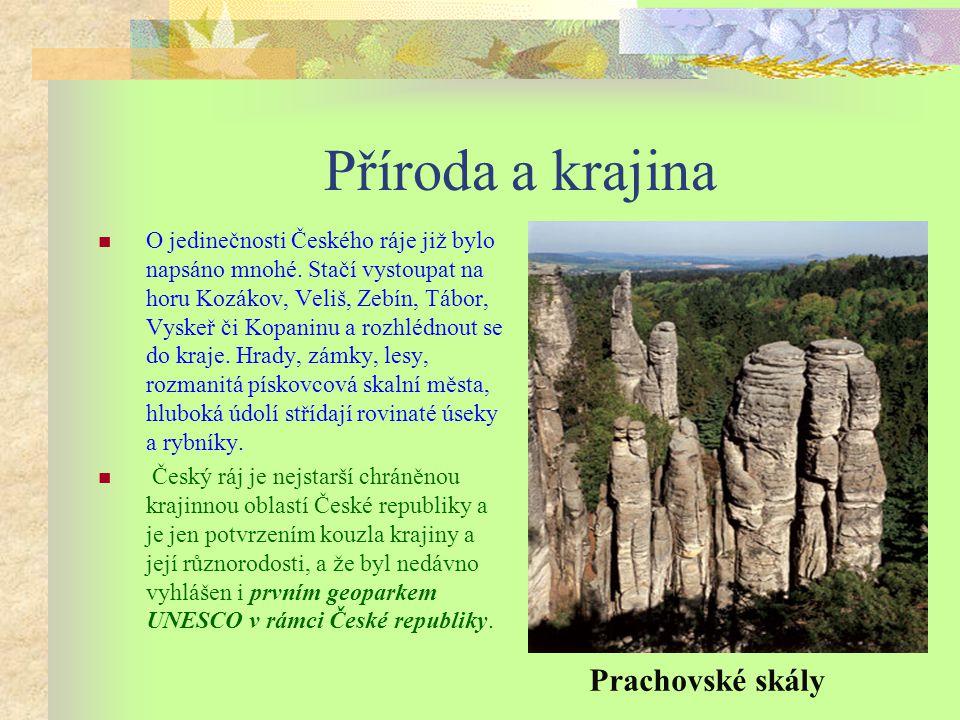 Příroda a krajina Prachovské skály
