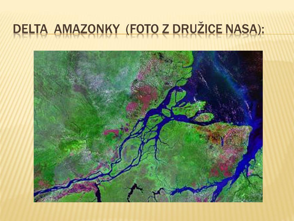 Delta amazonky (foto z družice nasa):