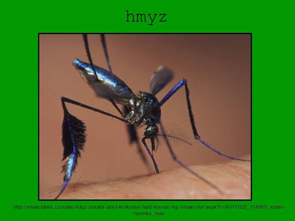 hmyz http://xman.idnes.cz/video-kdyz-zvirata-utoci-krokodyli-hadi-komari-frg-/xman-styl.aspx c=A071022_114959_xman-novinky_mao.