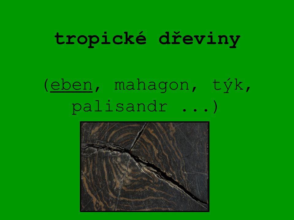 tropické dřeviny (eben, mahagon, týk, palisandr ...)